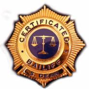 Bailiff badge